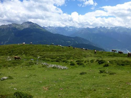 Blick ins Tal nach Überquerung