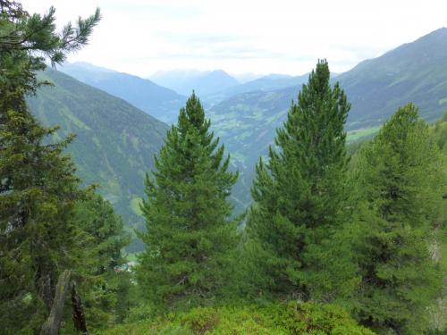 Blick ins Tal vom Pausenplatz