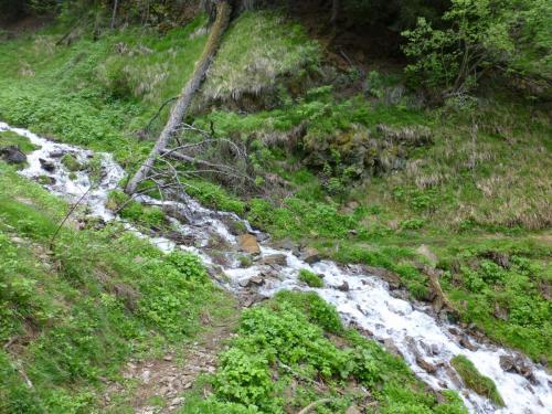 Bergbachübergang